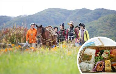 木曽馬と歩こう!ウォーキング