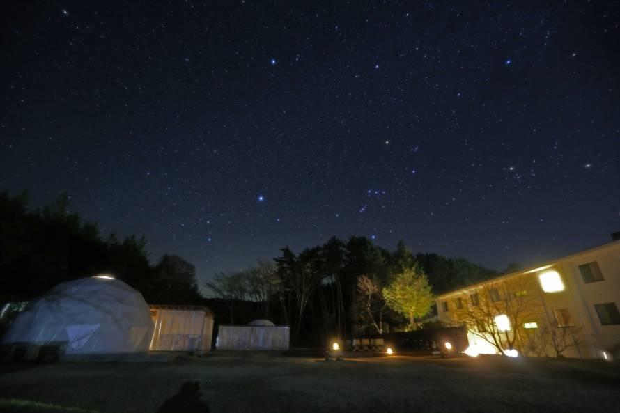 4月は!こと座流星群が観測できるかもしれません。